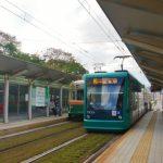 賛成?反対?路面電車の軌道緑化に市が1500万円。