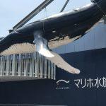 オープンまで2か月!外観はぼぼ完成した『マリホ水族館』