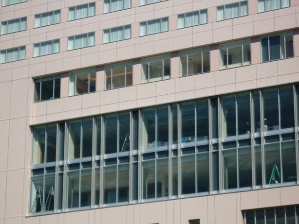 201007wakakusa-33.jpg
