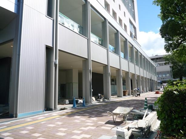 201007wakakusa-8.jpg