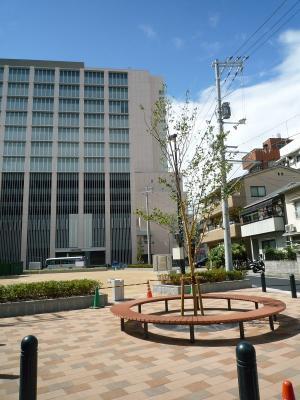 201008wakakusa-13.jpg