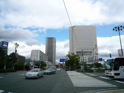201010wakakusa-2.jpg