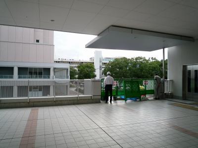 201010wakakusa-3.jpg