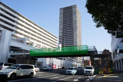 201011wakakusa-19.jpg