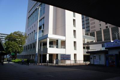201011wakakusa-1.jpg
