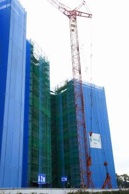 201101ushita-11.jpg