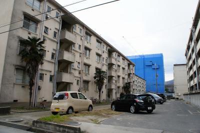 201101ushita-17.jpg