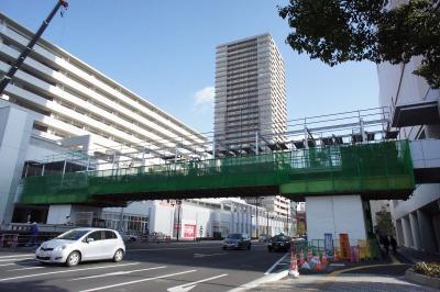 201101wakakusa-3.jpg