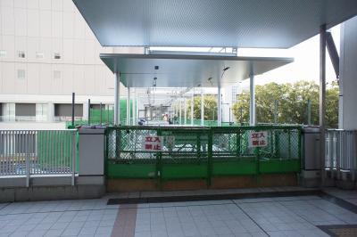 201101wakakusa-6.jpg