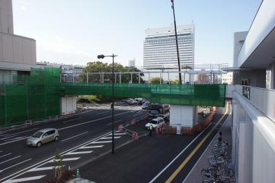 201101wakakusa-7.jpg
