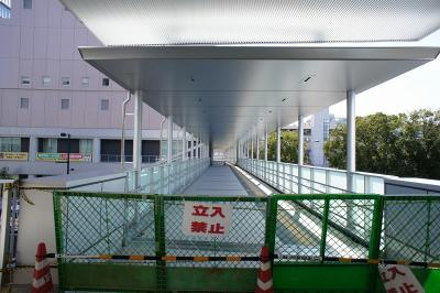 201102wakakusa-17.jpg