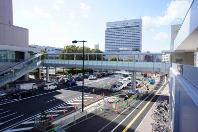 201102wakakusa-18.jpg