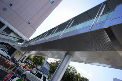 201102wakakusa-21.jpg