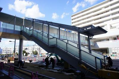 201102wakakusa-28.jpg