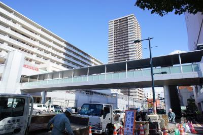 201102wakakusa-32.jpg