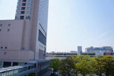 201204wakakusa-12.jpg