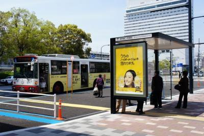 201204wakakusa-14.jpg