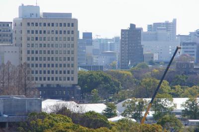 201303hiroshimajo-9.jpg