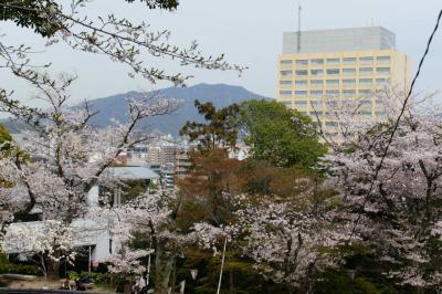 201304hijiyama-3.jpg