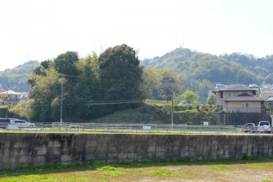 201404kousoku_nakayama-14.jpg