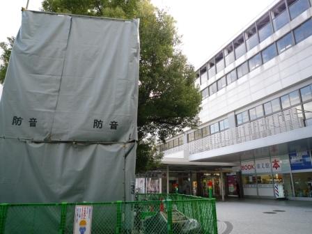 201001wakakusa-8