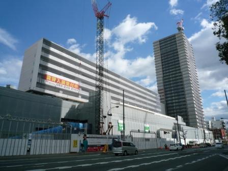 201001wakakusa-11