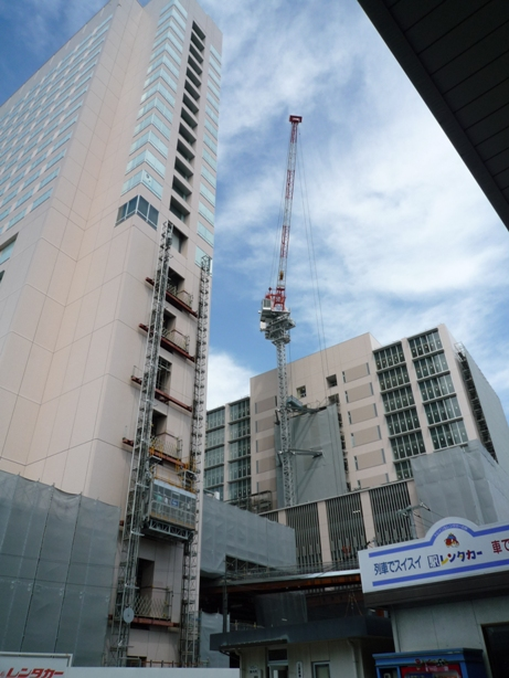wakakusa201005-4