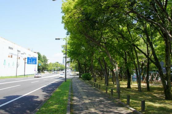 heiwaohashi-2.jpg