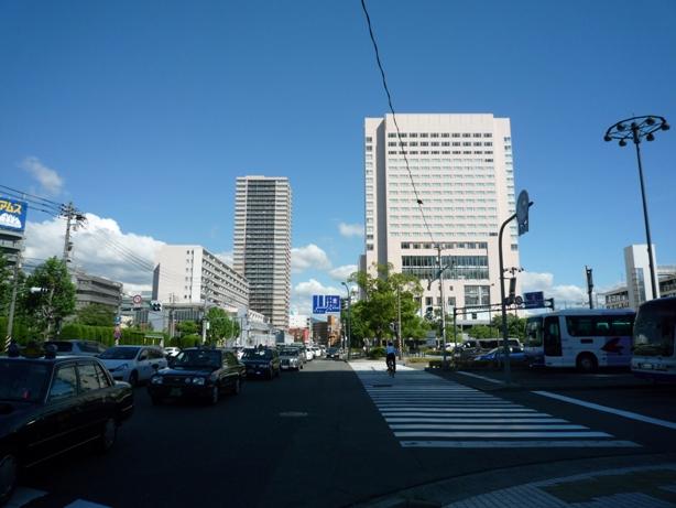 201007wakakusa-30.jpg