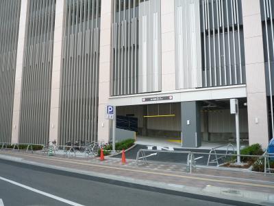 201008wakakusa-15.jpg