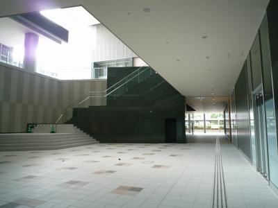 201010wakakusa-16.jpg