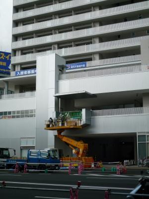 201010wakakusa-8.jpg