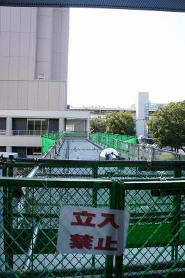 201011wakakusa-11.jpg