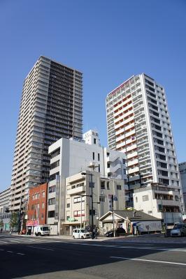 201011wakakusa-22.jpg