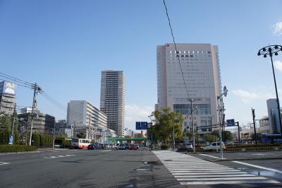 201012wakakusa-3.jpg