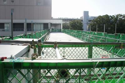 201012wakakusa-5.jpg