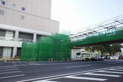 201101wakakusa-11.jpg