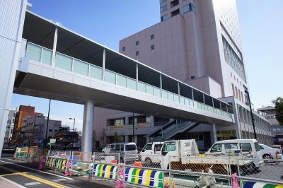 201102wakakusa-20.jpg