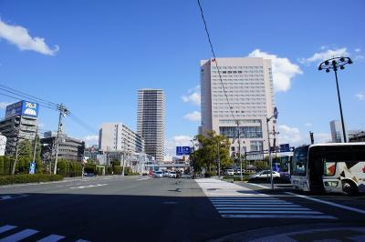 201102wakakusa-34.jpg