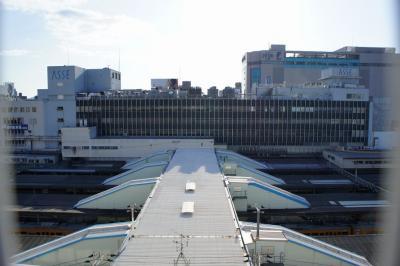 201201hiroshimaeki-6.jpg