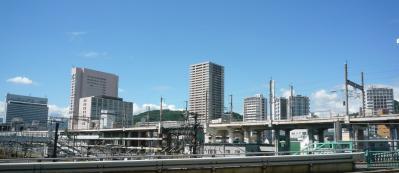 201204wakakusa2-1.jpg