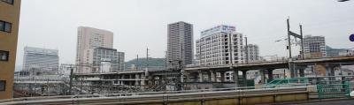201204wakakusa2-2.jpg