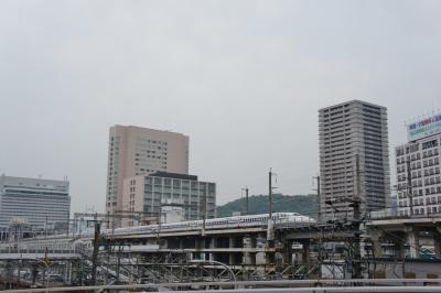 201204wakakusa2-3.jpg