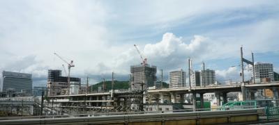 201204wakakusa2-4.jpg