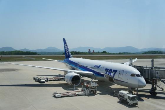 2012hiroshima_airport-4.jpg