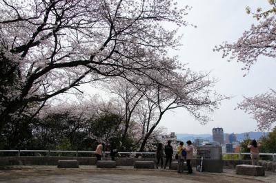 201304hijiyama-1.jpg