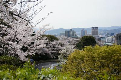 201304hijiyama-4.jpg