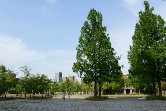 201305hirodai_ato-3.jpg