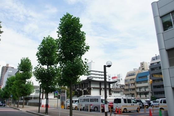 201408heiwaoodori-1.jpg