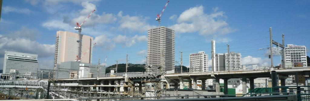 201001wakakusa-1